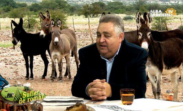 aurel-stan-magarite