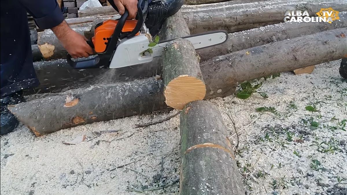furt-lemn-alba-politia