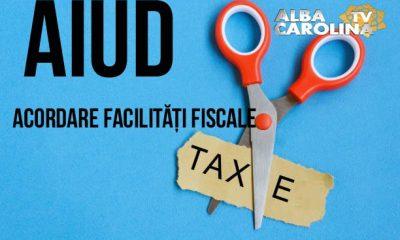 Acordare-facilitati-fiscale