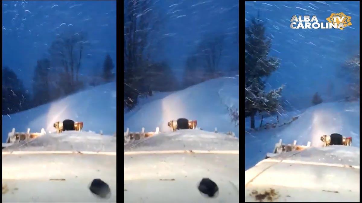 ninge-apuseni-poiana-vadului
