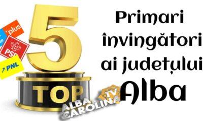 top 5 primari alba