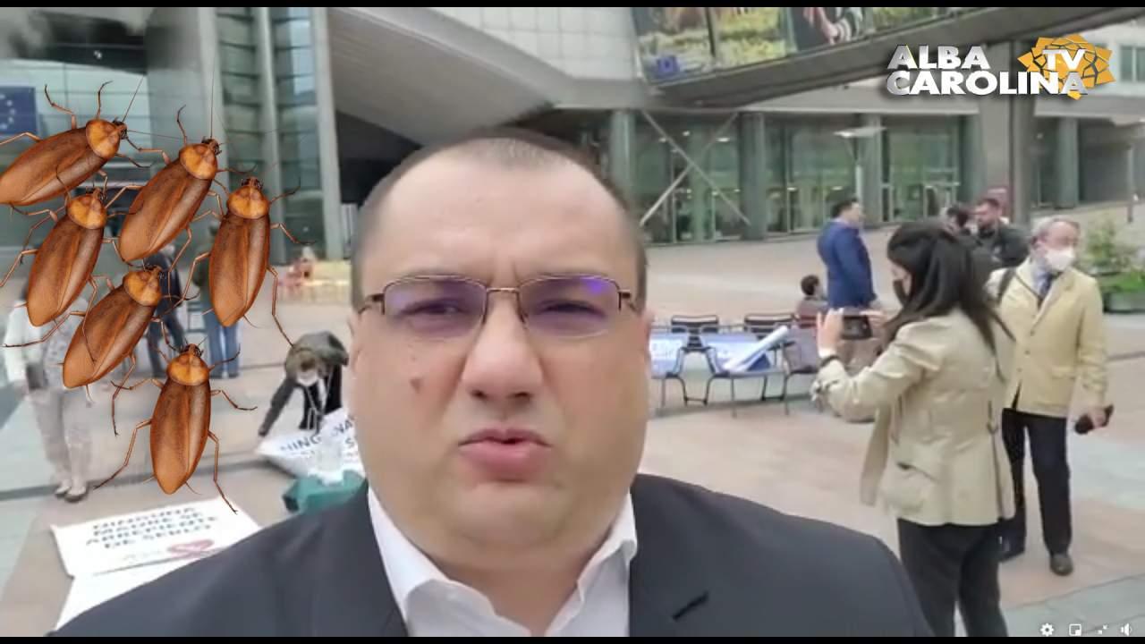 Cristian Terheș drepturi
