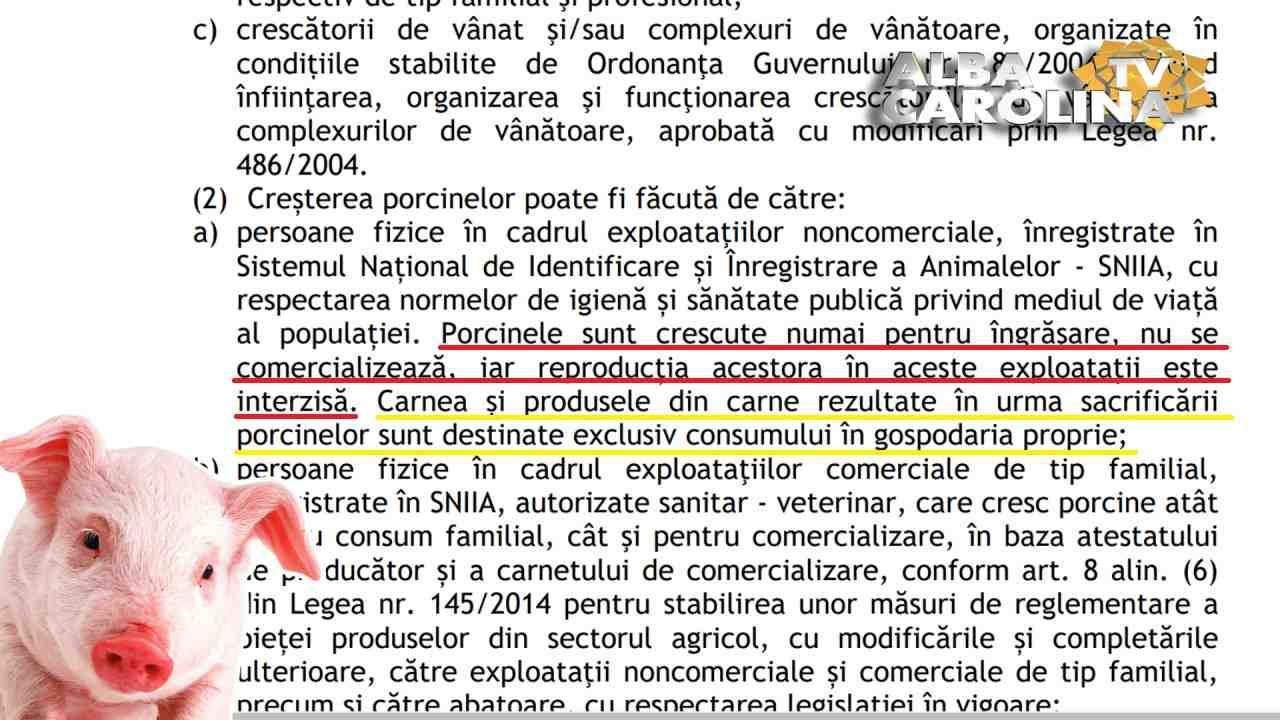 cresterea porcilor interzisa guvern ordonanta pnl